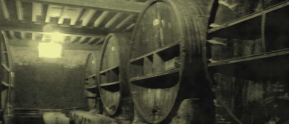 Domaine de mallemort : nos fûts de chêne centenaire